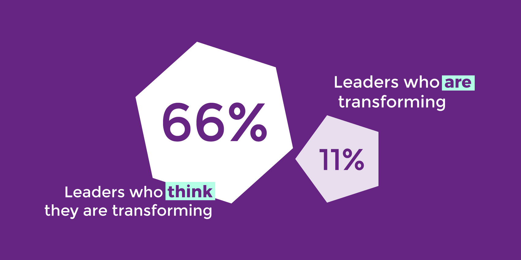 percentages of leaders who are implementing digital transformation vs digital optimization